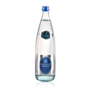 Acqua San Carlo Leggermente Frizzante 1Lt vetro