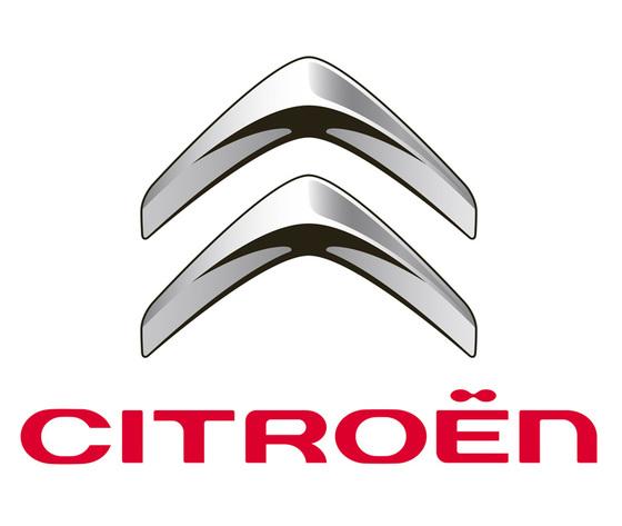 Motore per Citroen modello C3