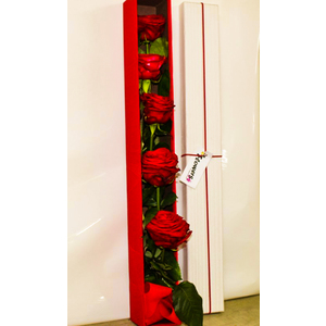 Box con 5 Rose rosse