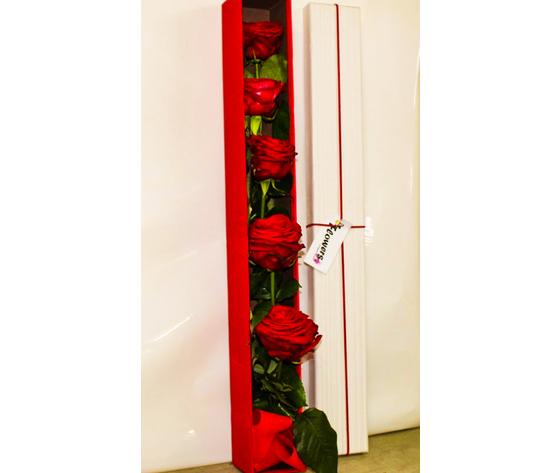 Box con 5 Rose rosse