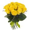 69 rose gialle