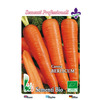1001 carota berlicum 2