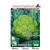 1105 cavolfiore verde di  macerata