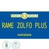 Rame zolfo plus 2
