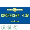 Bordogreen flow 2