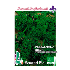 PREZZEMOLO NANO RICCIUTO  (PETROSELINUM SATIVUM)      CURLEY PARSLEY