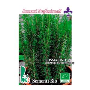 ROSMARINO     (ROSMARINUS OFFCINALIS)    ROSEMARY