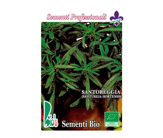 SANTOREGGIA (SANTUREJA HORTENSIS)             SAVORY