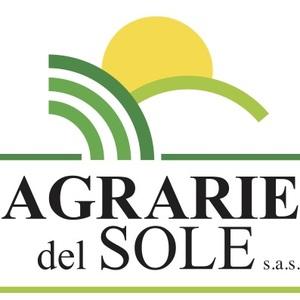 FAGIOLO NANO MANGIATUTTO GARRAFAL ENANA  (MARCONI GRANO MARRONE)