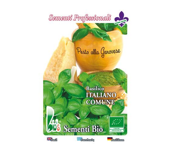 BASILICO ITALIANO CLASSICO ( GENOVESE )