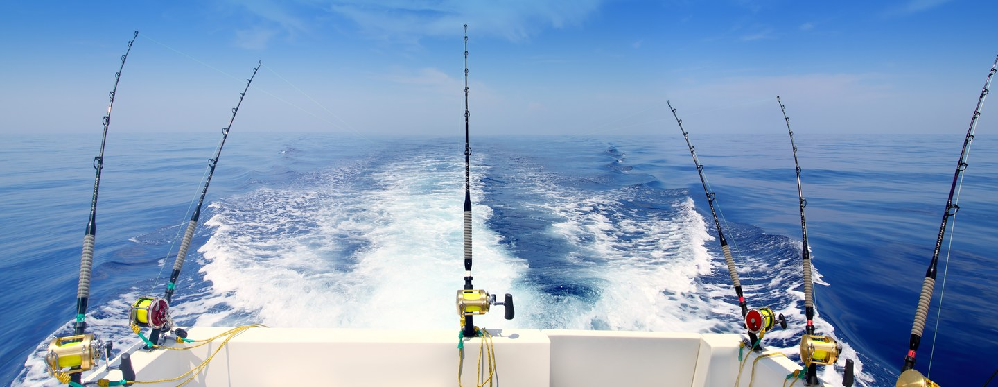866408 sea fishing wallpaper