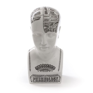 Busto in Porcellana  Phrenology,  DESIGN Seletti