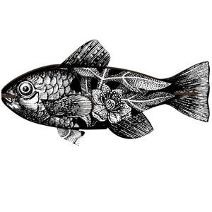 Trofeo Ecologico da parete pesce In Mdf Mod.Vertigo, Marca Miho