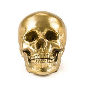 Seletti Diesel Collezione Wunderkammer Mod.Human Skull