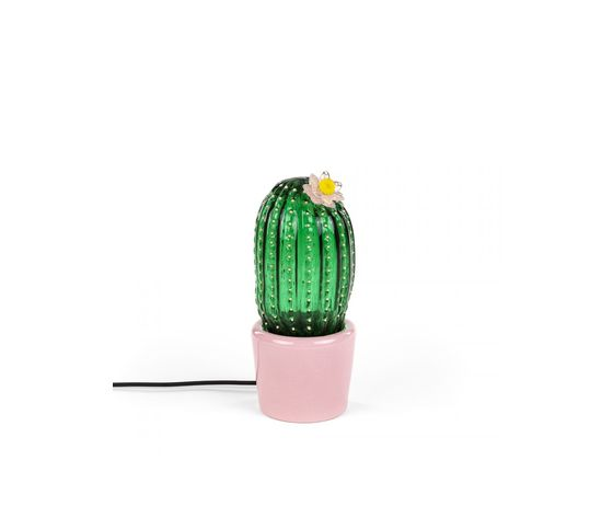 Cactus sunrise medio