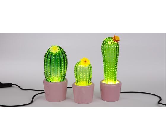 Tre cactus