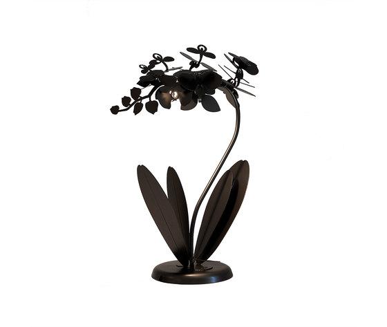 Orchidea bronzo bronzo