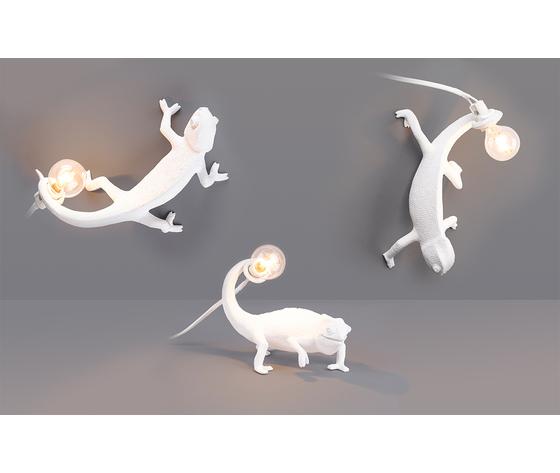 Chameleonlamp group lights on   x sito copia