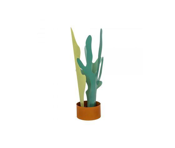 Rain plant 2