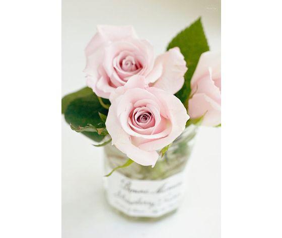 Rose madelaine stick