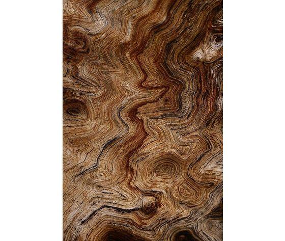Ricarica cedro millefiori milano