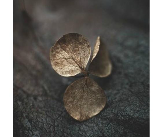 Fiore cashmere