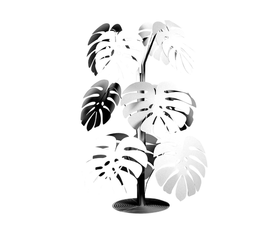 Pianta piccola tropicale bianca monstera