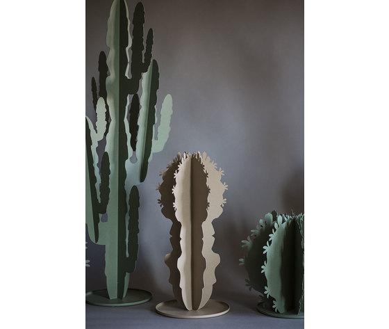 2924 cactus grande gallery 1
