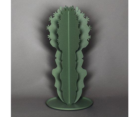 2927 cactus medio c57