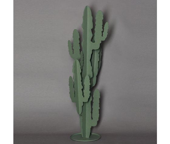 2924 cactus grande c57