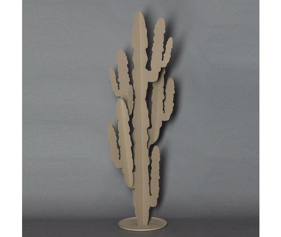 2924 cactus grande c116
