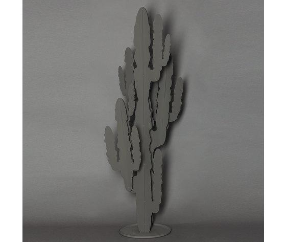 2924 cactus grande c18