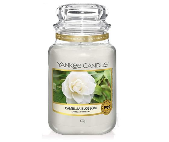 ya1651381e    cammelia blossom grande giara