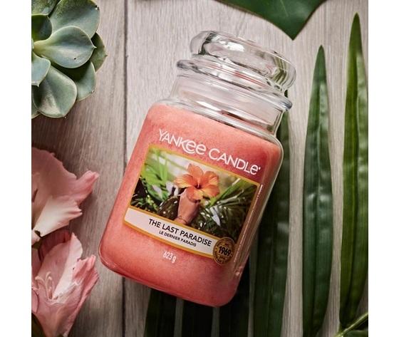ya115174e    candela yankee the last paradise metoo design