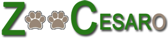 Logo zoocesaro sito2