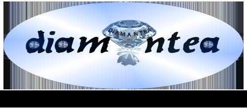 Logo eshop 2017timesnewroman