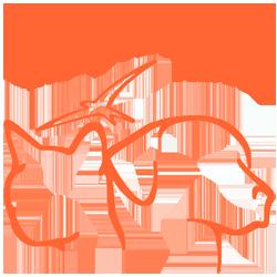 Logo con scritta 250