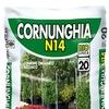 Cornunghia n14