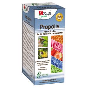 Zapi Propolis concentrato 125ml