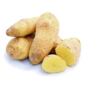 Patata da seme Spunta calibro 35/55 10kg