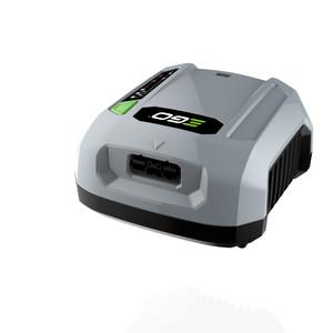 Ego Caricabatteria Professionale - CHX5500E