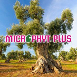 Microphyt Plus kg. 6.00