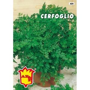 Cerfoglio