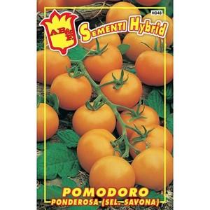 Pomodoro Giallo F1 (sel. Savona) Hybrid maxi