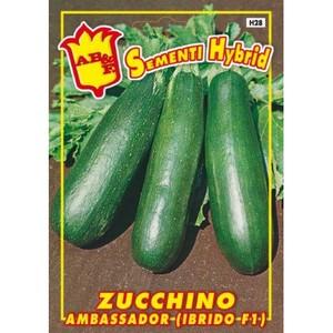 Zucchino Ambassador F1 Hybrid