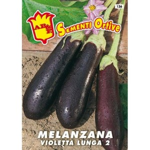 Melanzana violetta lunga 2