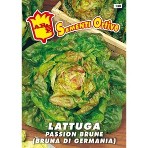 Lattuga Passion Brune (Bruna di Germania)