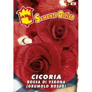 Cicoria Rossa di Verona (Grumolo rosso)