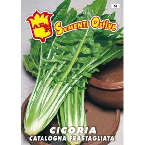 Cicoria Catalogna Frastagliata
