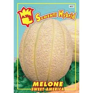 Melone Sweet America Hybrid